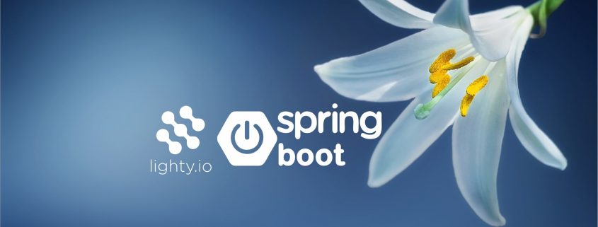 spring.io & lighty.io integration