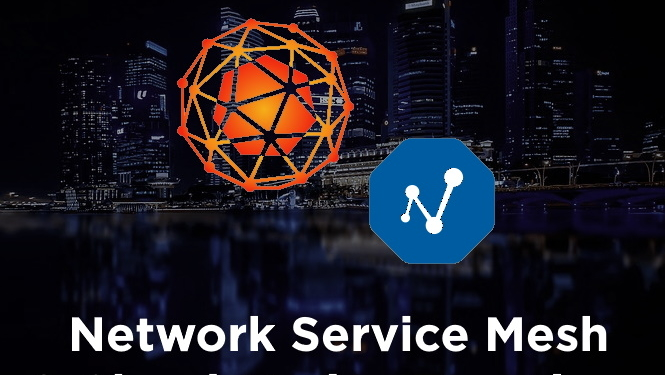 Network Service Mesh & CNF's by PANTHEON.tech